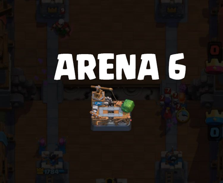 arena 6